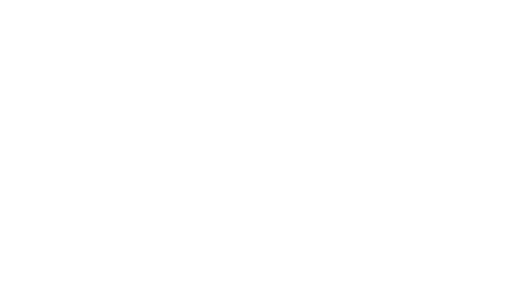VC Consulting